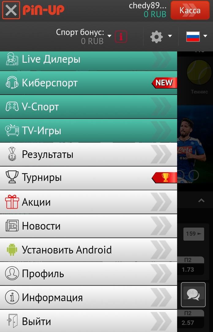 Pin Up Bet скачать мобильное приложение